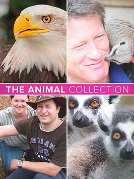 virgin-experience-days-the-animal-collection