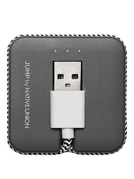 native-union-portable-power-jump-charging-cable-with-lightning-connector-zebra
