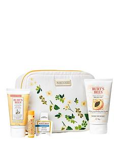 burts-bees-bag-of-treats-gift-setnbspamp-free-burts-bees-naturally-gifted-bloom-bundle-offer