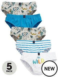 mini-v-by-very-boys-im-wild-briefs-5-pack