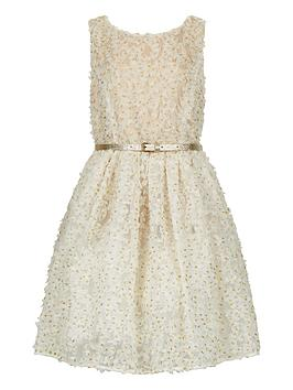monsoon-storm-girlsnbsptennesse-dress-8-15-years