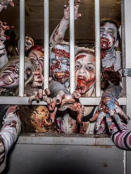 Virgin Experience Days Virgin Experience Days Zombie Outbreak Experience  ... Picture