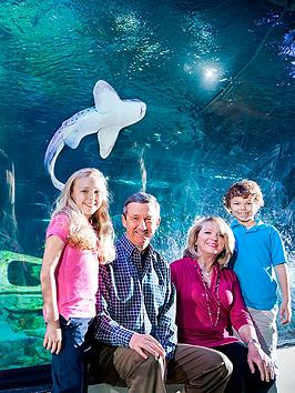 virgin-experience-days-family-visit-to-sealife-london-aquarium-and-meal-at-brasserie-blanc-southbank