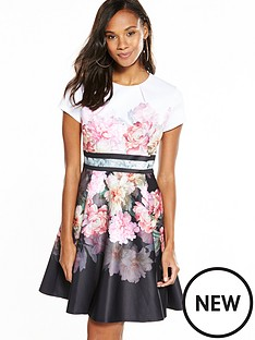 ted-baker-valerey-skater-dress