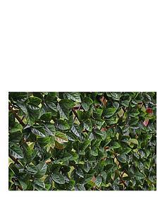 witchgrass-autumn-hedging-trellis-1m-x-2m