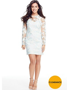 v-by-very-petite-embroidered-mini-dress