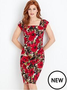 joe-browns-joe-browns-tropical-hibiscus-dress