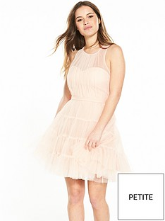 little-mistress-petite-mesh-skater-dress