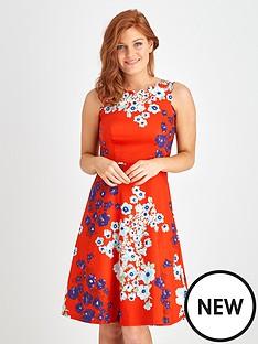 joe-browns-va-va-voom-dress