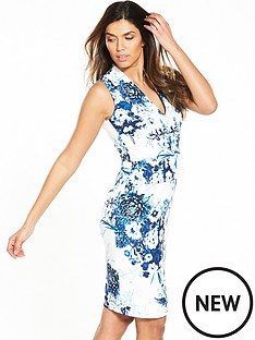 phase-eight-phase-eight-chinoiserie-print-dress