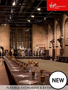 virgin-experience-days-warner-bros-studio-tour-london-the-making-of-harry-potter-with-return-transport-family-package