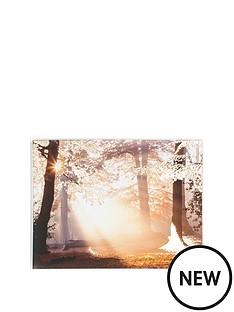 graham-brown-metallic-forest-canvas