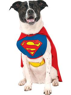 superman-dog-fancy-dress-costume