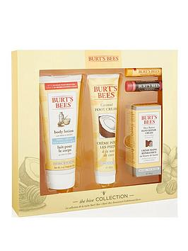 burts-bees-the-hive-collection
