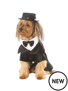 dog-costume-dapper-dog