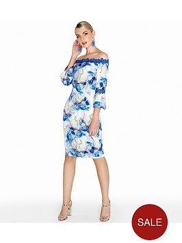 paper-dolls-spray-floral-bardot-lace-detail-dress