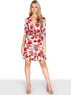 girls-on-film-poppynbspprintnbspa-line-dress-with-frilly-hem