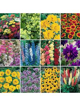 complete-hardy-garden-perennial-collection-24-plugs