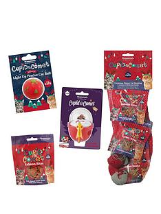 rosewood-cat-christmas-bundle-stocking-toys-andnbsptreats