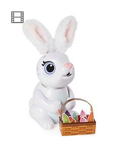 zoomer-hungry-bunnies