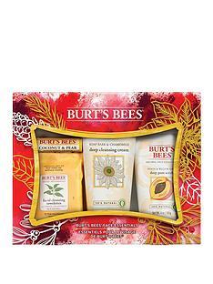 burts-bees-burts-bees-face-essentials-gift-set