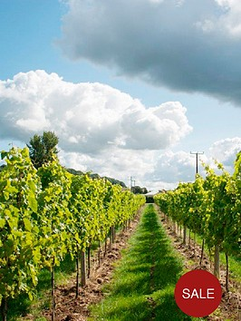 virgin-experience-days-vineyard-tour-and-tasting-for-two-at-aldwick-court-farm-amp-vineyard