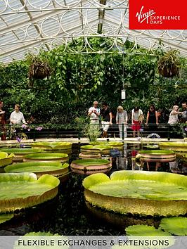 virgin-experience-days-visit-to-kew-gardens-and-palace-for-two-adults