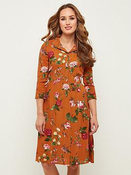 joe-browns-hummingbird-shirt-dress