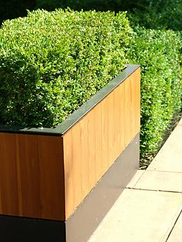 Very  Box (Buxus) Hedging Pack - 10 Plants In 9Cm Pots
