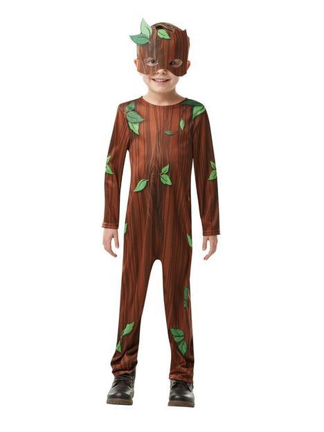 roald-dahl-twig-boy-costume