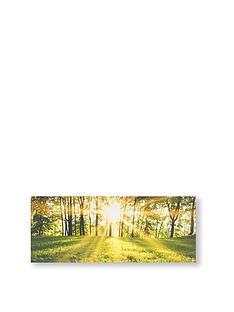 graham-brown-tranquil-forest-fields-canvas-wall-art