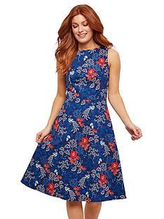 joe-browns-vintage-peacock-dress