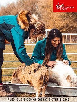 virgin-experience-days-piggy-pet-and-play-for-two-at-kew-little-pigs-in-amersham-buckinghamshire
