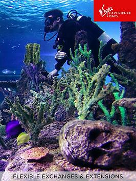 virgin-experience-days-dive-with-sharks-at-skegness-aquarium