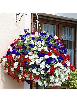 patriotic-petunia-basketplanter-pluig-mix-x-12