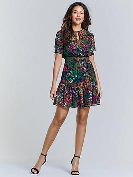 Michelle Keegan Michelle Keegan Shirred Waist Tea Dress - Animal Print Picture