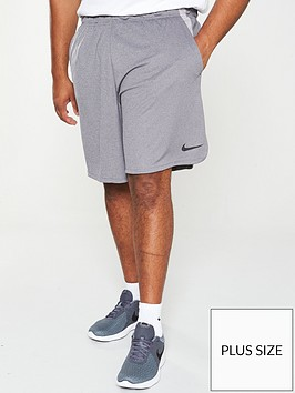 nike-plus-size-dry-training-shorts-grey