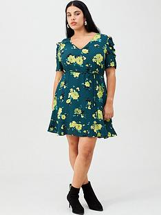 oasis-curve-rose-print-skater-dress-green
