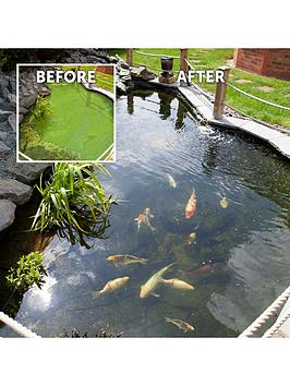 Very Pond Clear Pro 2-Step Pond Clearing Treatment - 20,000L Picture