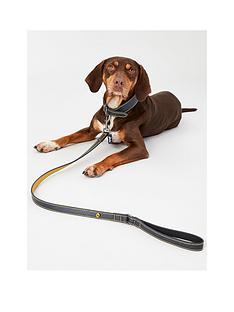 joules-joules-navy-leather-collar