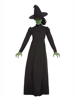 wicked-witch-adult-costume