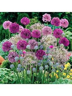 allium-bulb-collection-100-bulbs