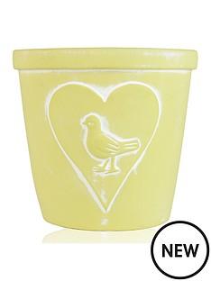 plant-pot-yellow-bird