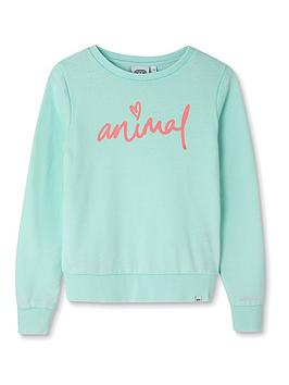 Animal Animal Girls Mila Crew Neck Sweatshirt - Green Picture
