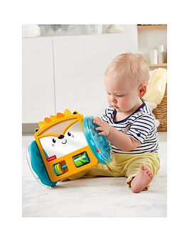 Fisher-Price Fisher-Price Sit To Crawl Hedgehog Mirror Picture