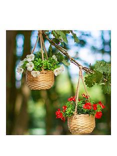 smart-garden-basket-bouquets-2-pack