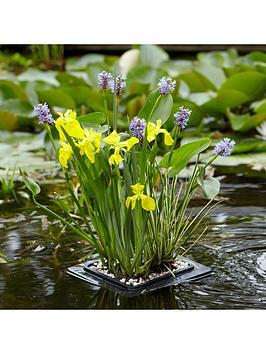complete-pond-floating-raft-kit--plants-gravel-raft