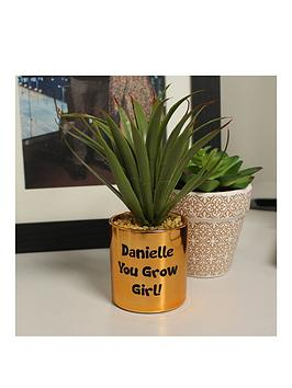 Very Personalised Aleo Vera Plant Pot Picture