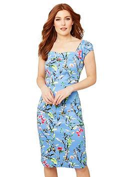 Joe Browns Joe Browns Vintage Floral Fitted Dress - Blue Multi Picture