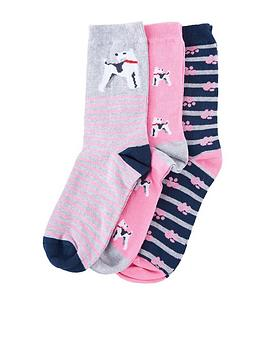 barbour-terrier-paw-sock-giftbox